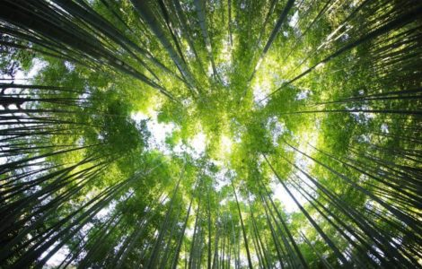 Cum să crești din punct de vedere spiritual